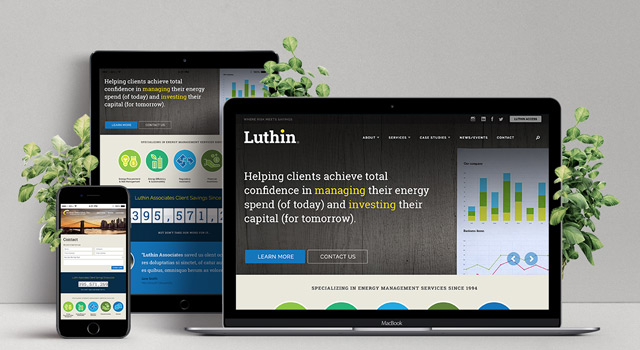 Luthin Associates