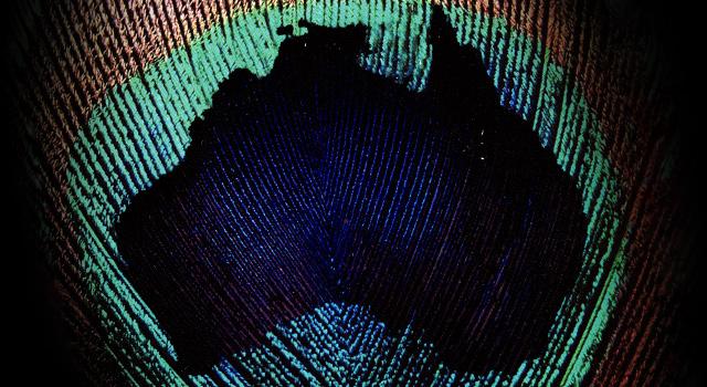 Australian Designers Collections Lookbook